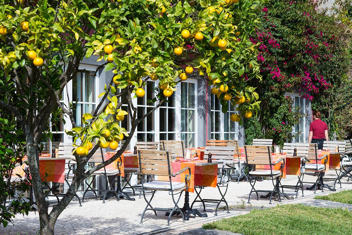 hotel-atrio-madeira-restaurant-terrasse-01